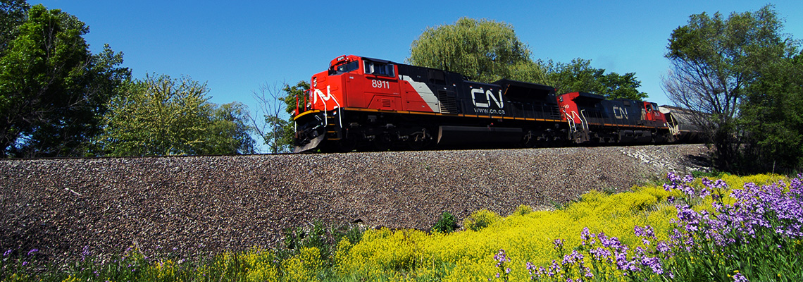 Vegetation Management at CN