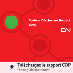Carbon DIsclosure Project 2019