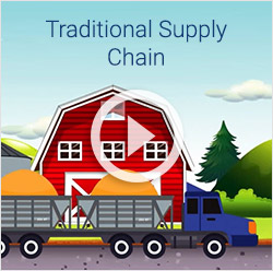 The Traditional Supply Chain